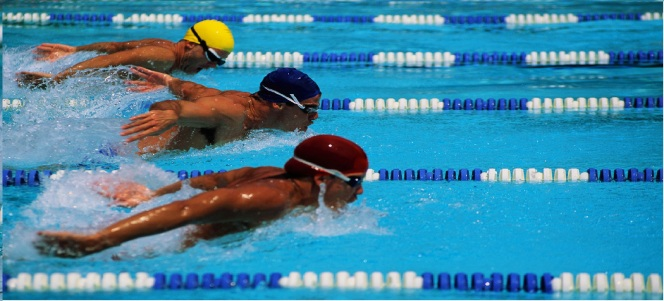 Swimming-race1