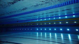 British-Swimming-Pic
