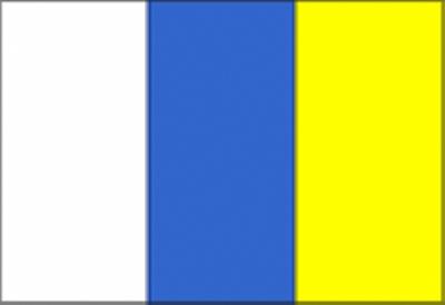 198-bandera CANARIA